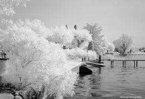 Italian IR  - Waterside by Okavanga