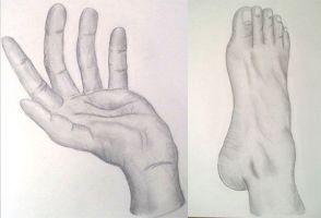 Life Drawing - Hand and Foot by AngelDeeDee