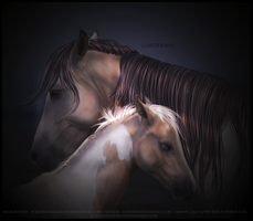 'a mothers love' by equinestudios
