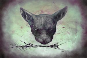 Angry Cat - Colour by RuslanKadiev