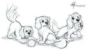 Cavalier Spaniels Caricature Sketch by timmcfarlin