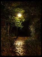 The Cobbles by Design91
