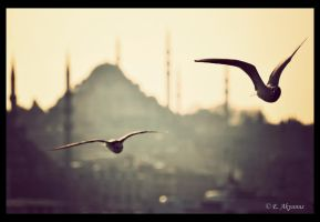 Istanbul by devianEmre