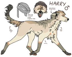 Harry ref by r-ior
