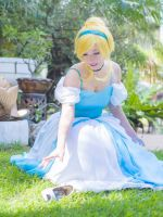 Cinderella -  The Little Glass Slipper by nupla