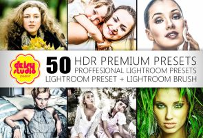 40 + 10 HDR Lightroom Presets and Brush - DSG024 by daisyanderson