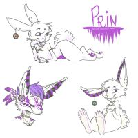 Prin by BunnyGDx