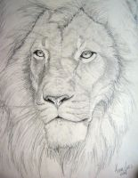 Lion II - SOLD by Icefyire