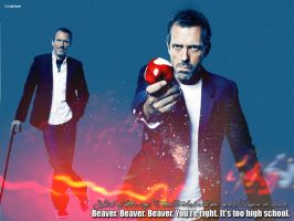 Dr. House by patzbone