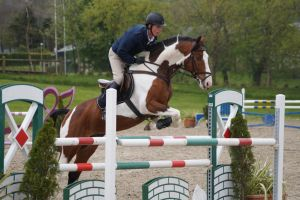 Pinto horse - Show jumping stock 3.4 by MagicLecktra