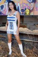 R2-D2 and C-3PO by Ivy95