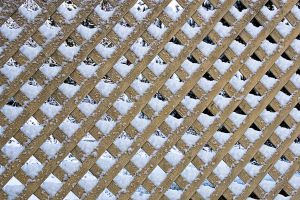 wintery trellis by muffet1