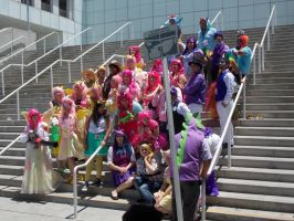 AX2014 - MLP Gathering: 07 by ARp-Photography