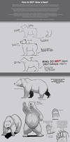 How to not draw a bear. by Dj-Rodney