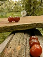 cherry in balance by ad-shor
