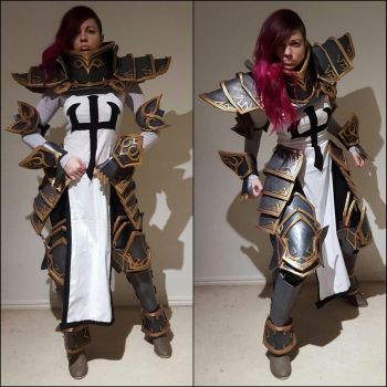Heroes Of The Storm - Crusader by ArtisansTheory