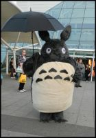 Totoro by MJ-Cosplay