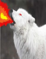 Fire Breathing Wolf by angelsoflight