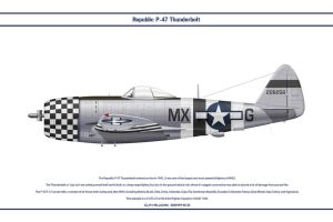 P-47 USAAF 82nd FS 1 by WS-Clave