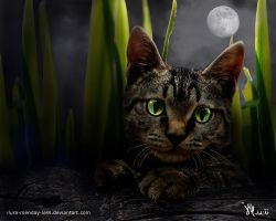 glow in the dark by ilura-menday-less