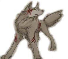 wolf by kovalion