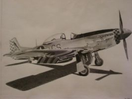P-51 by Graphite-requiem