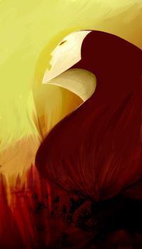 phoenix rising by toastified