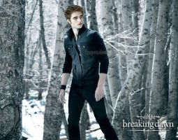 Edward Cullen by kupat