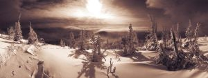 snowy mysterious panorama by RadioUran