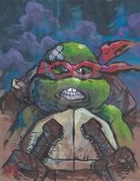 Raphael is Cool BUT Crude! by EnricoManiago