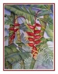 Red Heliconia 2006 by baglady