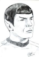 Mr. Spock by Ralphmax