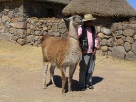 A man and his llama by sponch