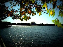 Jefferson memorial by GracieKane