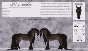 + #211 Briiahel - Reference Sheet + by Aisuruu