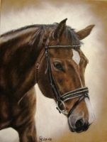 Our Horse by AnimalsART