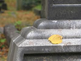 Brompton Cemetery 2 by an-neo