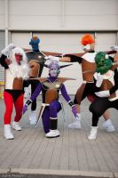 Romics 2009-10-11: DBZ 01 by LarsVanDrake