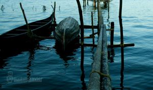 viewfinder 0041 by sudhithxavier