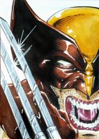 Big Wow Comic Fest 2015 Wolverine PSC w. Blond by mechangel2002