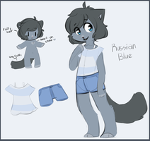 Russian Blue ADOPTABLE SOLD by QTipps