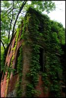 Reclaimed By Nature by raistlin306
