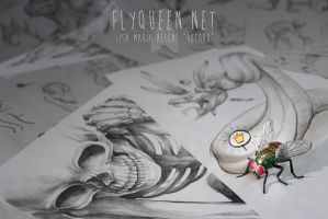 Flyqueen ID by FlyQueen