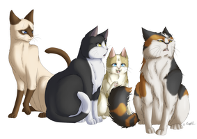 Cats, duh by EmBBu-chan