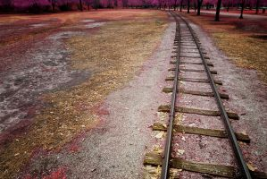 Railroad Tracks by helios-spada