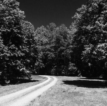 The Long and Winding Road by EndlessMuse