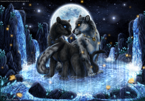 Promise of the Night by ThorinFrostclaw