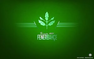 Fenerbahce Wallpaper 2013 by elifodul