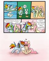 Rainbow Dash x Fluttershy: Naming of Names by melidichan