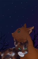 Tawnypelt and Rowanclaw by Acacion